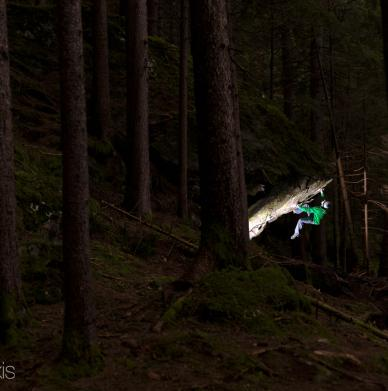 Ginzling Wald by Nicolas Altmaier