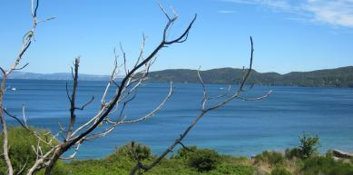 Kinloch, Lake Taupo by Antnz Burgess