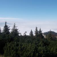 Schneeberg by Hike Climb