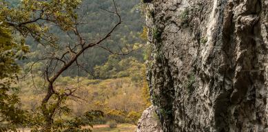 A picture from Mišja Peč by Jan Stojkovic Plexy