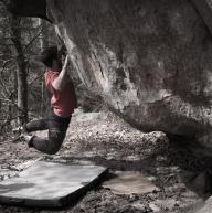 Fontainebleau by Ruben Emanuel