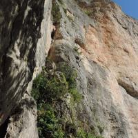 Gorges du Tarn by Alex Donel