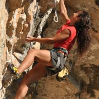 Climbing & Bouldering Competitions by Andrea BOLDRINI