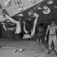 Spider Club by Anita Bernhardt