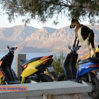 Kalymnos by Smart Topo