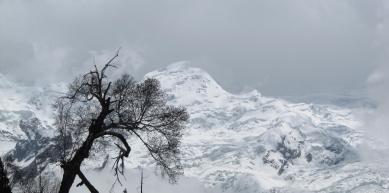 A picture from Nanga Parbat by Shehryar Khattak