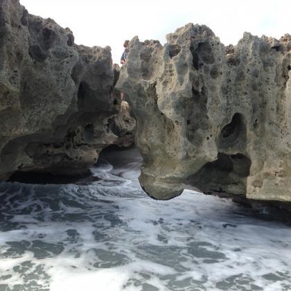 Blowing Rocks Preserve by Dan Van Brocklin