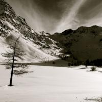 Arpy, Morgex by Lucia Prosino