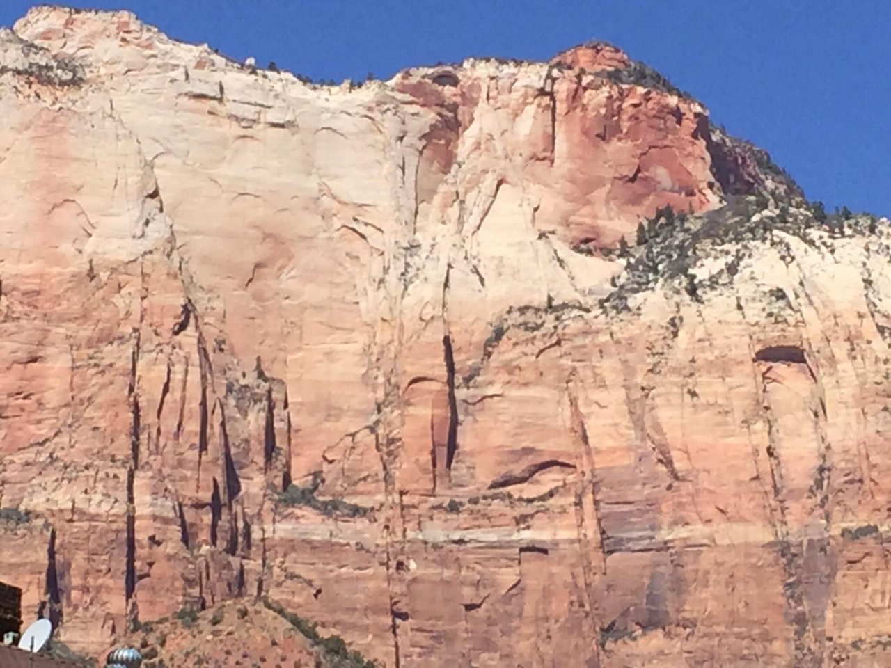 A picture from Zion National Park by Craig Meredith