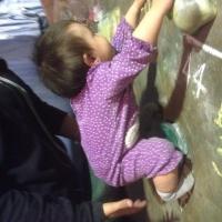 Adelaide\'s Bouldering Club by Andrea Torrealba de Costagliola