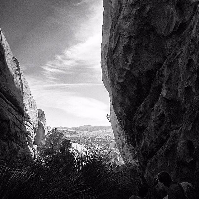A picture from Joshua Tree by Black Diamond