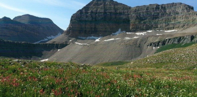 A picture from Mount Timpanogos by Diana Martirosova