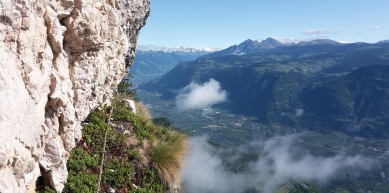 A picture from Gantkofel, South Tyrol by Ulrich Egger