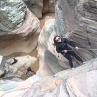 Zion National Park by Diana Martirosova