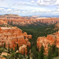 Bryce canyon by Diana Martirosova
