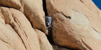 A picture from Joshua Tree by Jennifer Slater