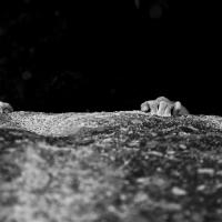 Targassonne by Julia Cassou