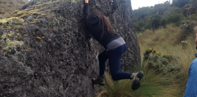 A picture from El cajas national park by Cristina Zúñiga