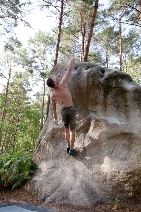 A picture from Fontainebleau by Tom Haber