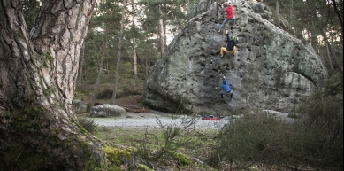 A picture from Fontainebleau by Stefan Koechel