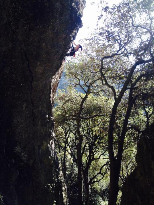 A picture from Jilotepec, Estado de México by Océane Vakoumé