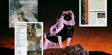 A picture from Vinny the Pug's Photo from by Vinny the Pug