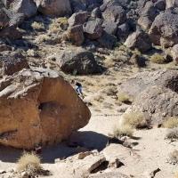 Happy Boulders by Funaticos Team