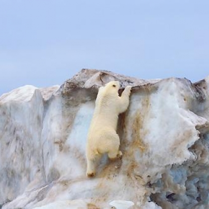 Greenland by Knudl Budl