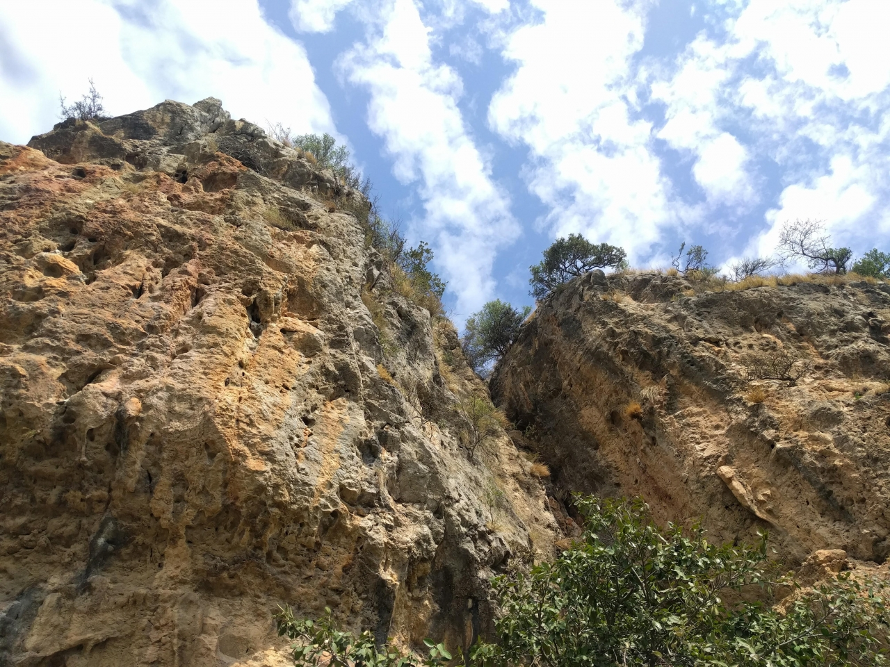 A picture from Mastodon Wall. by Shehryar Khattak