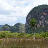 Vinales by Audrey Ch