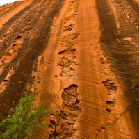 Zion National Park by Florent Vorger