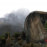 Mount Kenya by Bart Vaganée