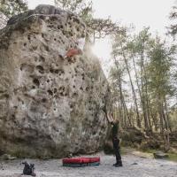 Fontainebleau by Hampus Samuelsson