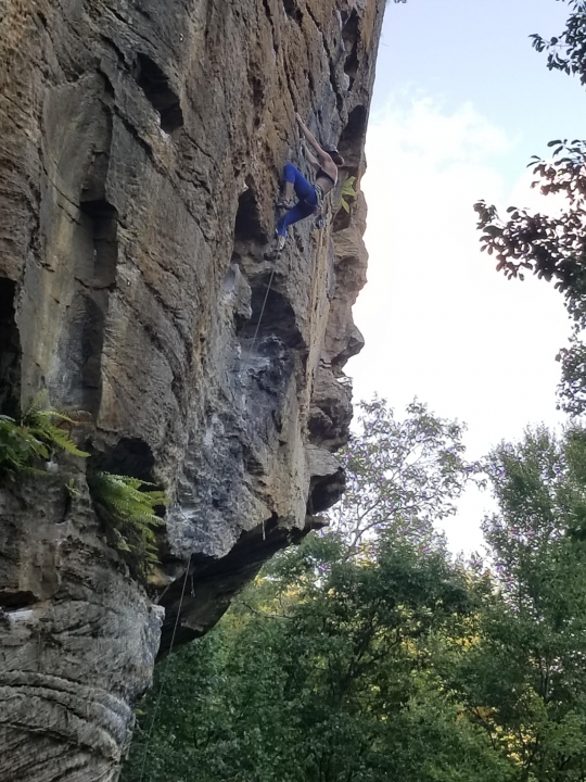 A picture from The Red River Gorge (RRG) by Matt Moy