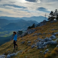 Eicherthütte, Hohe Wand by Bözse Hosszu