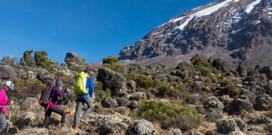 A picture from Lemosho glades Kilimanjaro climbing by Kiliho Guidance
