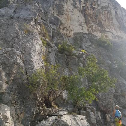 Falchi, Val Rosandra by Ricky Tram